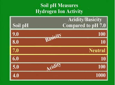 Figure 1: pH Scale Progression